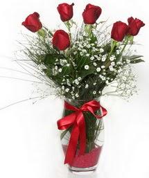 7 adet gülden cam içerisinde güller  Ağrı 14 şubat sevgililer günü çiçek