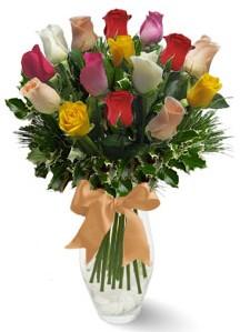 15 adet vazoda renkli gül  Ağrı internetten çiçek satışı