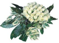 Ağrı internetten çiçek siparişi  9 Beyaz gül Özel kisiler için