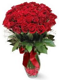 19 adet essiz kalitede kirmizi gül  Ağrı 14 şubat sevgililer günü çiçek