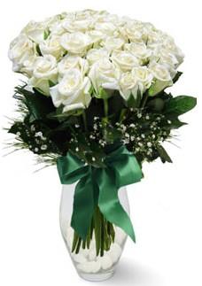 19 adet essiz kalitede beyaz gül  Ağrı çiçekçiler