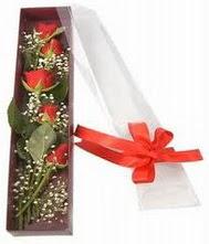 kutu içinde 5 adet kirmizi gül  Ağrı internetten çiçek siparişi