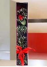 kutu içinde tek kirmizi gül  Ağrı çiçek online çiçek siparişi