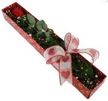 Tek kirmizi gül kutu içerisinde  Ağrı güvenli kaliteli hızlı çiçek
