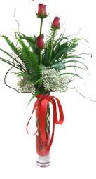 Ağrı çiçek siparişi sitesi  3 adet kirmizi gül vazo içerisinde