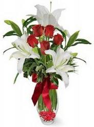Ağrı çiçek siparişi vermek  5 adet kirmizi gül ve 3 kandil kazablanka