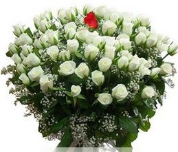 Ağrı internetten çiçek satışı  100 adet beyaz 1 adet kirmizi gül buketi