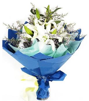 Ağrı anneler günü çiçek yolla  4 adet dal kazablankadan görsel buket