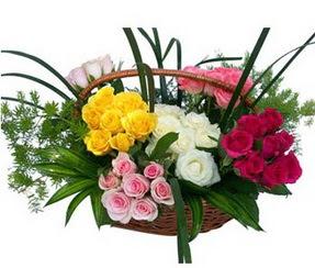 Ağrı ucuz çiçek gönder  35 adet rengarenk güllerden sepet tanzimi