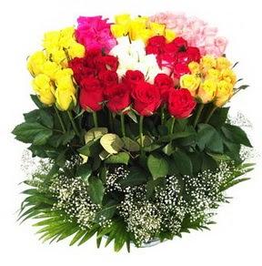 Ağrı çiçek mağazası , çiçekçi adresleri  51 adet renkli güllerden aranjman tanzimi