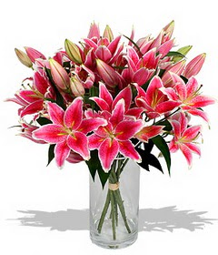 4 dal cazablanca görsel vazosu  Ağrı çiçekçi mağazası
