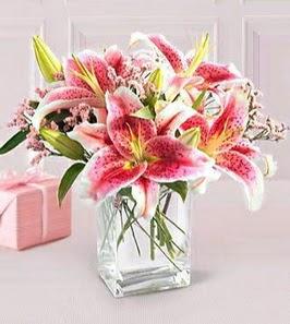 2 dal kazablanka görsel vazosu  Ağrı çiçek siparişi sitesi