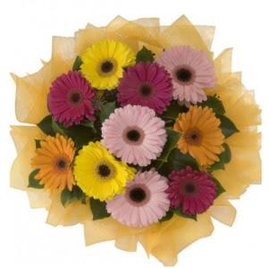 Ağrı İnternetten çiçek siparişi  11 adet karışık gerbera çiçeği buketi