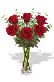 Ağrı çiçekçi mağazası  6 kırmızı gül vazosu