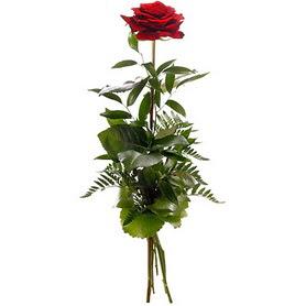Ağrı online çiçekçi , çiçek siparişi  1 adet kırmızı gülden buket