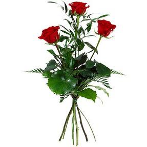 Ağrı uluslararası çiçek gönderme  3 adet kırmızı gülden buket