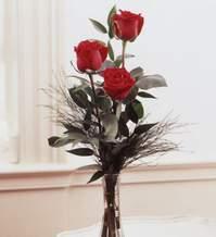 Ağrı internetten çiçek satışı  Vazoda 3 adet güzel gül