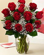 Sevgilime hediye 9 adet 1.ci kalite gül  Ağrı anneler günü çiçek yolla