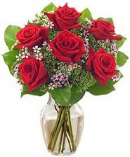 Kız arkadaşıma hediye 6 kırmızı gül  Ağrı internetten çiçek siparişi