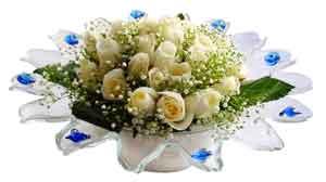 Ağrı çiçek online çiçek siparişi  11 adet Beyaz güller özel cam tanzim