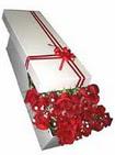 Ağrı çiçekçi telefonları  11 adet 1.kalite magnum güller