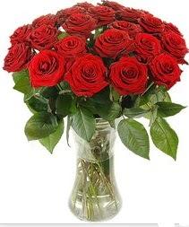 Ağrı çiçek mağazası , çiçekçi adresleri  Vazoda 15 adet kırmızı gül tanzimi