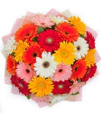 15 adet renkli gerbera buketi  Ağrı yurtiçi ve yurtdışı çiçek siparişi
