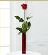 Vazo içerisinde 1 adet kırmızı gül  Ağrı internetten çiçek siparişi