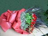 Ağrı çiçekçi telefonları  12 adet kirmizi gül elyafta