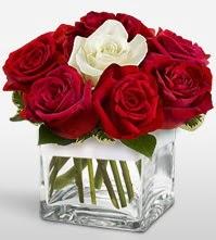 Tek aşkımsın çiçeği 8 kırmızı 1 beyaz gül  Ağrı uluslararası çiçek gönderme