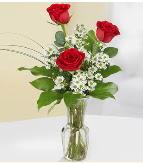 Vazo içerisinde 3 adet kırmızı gül  Ağrı çiçek satışı