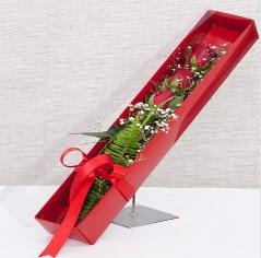 Kutu içerisinde 3 adet kırmızı gül  Ağrı online çiçek gönderme sipariş