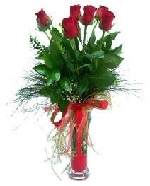 vazo içerisinde 5 kırmızı gül  Ağrı güvenli kaliteli hızlı çiçek