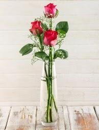 Cam içerisinde 3 kırmızı gül  Ağrı çiçek satışı