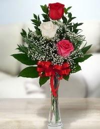 Camda 2 kırmızı 1 beyaz gül  Ağrı ucuz çiçek gönder