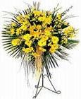 Ağrı yurtiçi ve yurtdışı çiçek siparişi  Sari kazablanka Ferforje