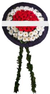 mozele çiçeği  Ağrı hediye sevgilime hediye çiçek