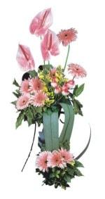 Ağrı güvenli kaliteli hızlı çiçek  Pembe Antoryum Harikalar Rüyasi