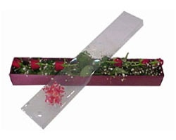 Ağrı anneler günü çiçek yolla   6 adet kirmizi gül kutu içinde