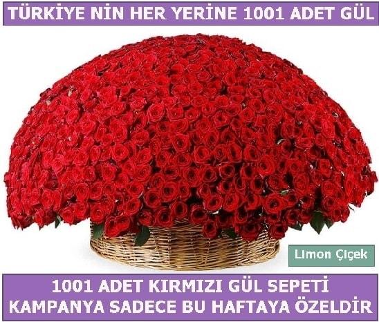 1001 Adet kırmızı gül Bu haftaya özel  Ağrı İnternetten çiçek siparişi