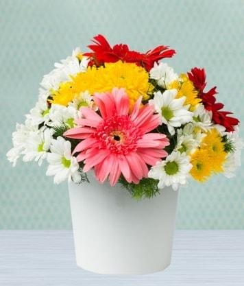 Seramik Vazoda Gelbera ve Papatya  Ağrı çiçek gönderme