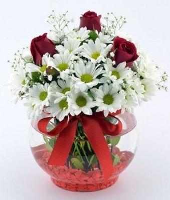 Fanusta 3 Gül ve Papatya  Ağrı internetten çiçek satışı