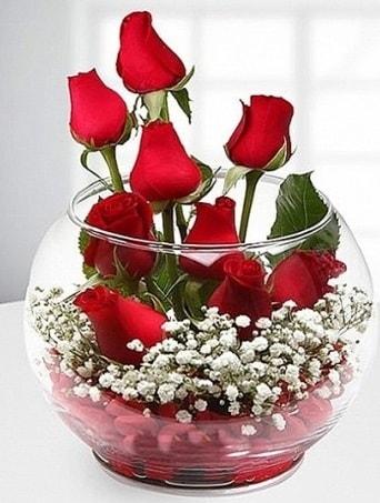Kırmızı Mutluluk fanusta 9 kırmızı gül  Ağrı çiçek siparişi sitesi