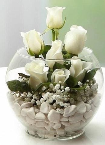 Beyaz Mutluluk 9 beyaz gül fanusta  Ağrı çiçek siparişi sitesi