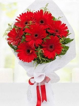 Kırmızı Gelbera Buketi  Ağrı internetten çiçek siparişi