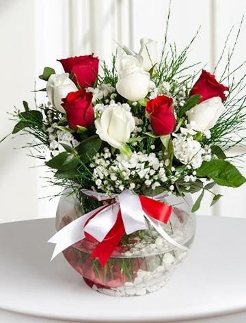 Aşk Küresi  5 beyaz 5 kırmızı gül fanusta  Ağrı internetten çiçek satışı
