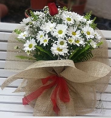 Papatya 1 adet kırmızı gül buketi  Ağrı çiçekçiler