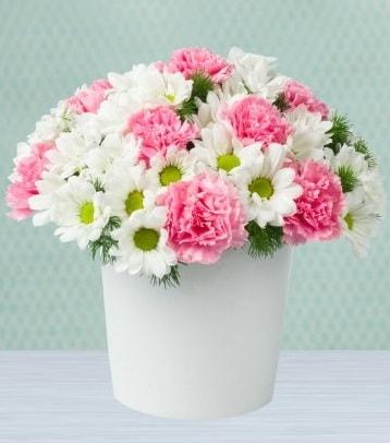 Seramik vazoda papatya ve kır çiçekleri  Ağrı çiçek siparişi sitesi