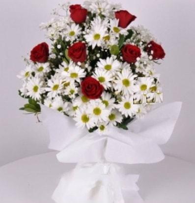 7 adet kırmızı gül ve papatyalar krizantem  Ağrı internetten çiçek satışı