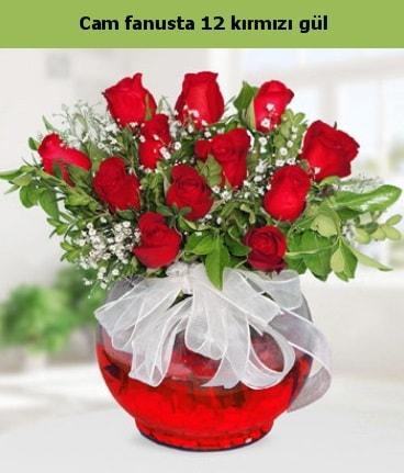 Cam içerisinde 12 adet kırmızı gül  Ağrı internetten çiçek satışı